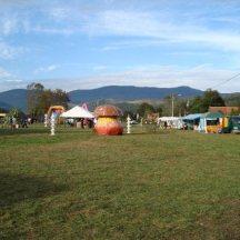 Festival salat'n co 2 - 2010 (10)