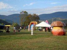 Festival salat'n co 2 - 2010 (11)