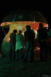 Festival salat'n co 2 - 2010 (6)