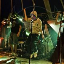 Festival Salat'n co 3 - 2011 (11)
